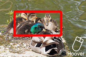 Olympus-OM-D-review colour-example-image
