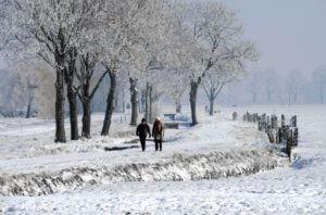 winter2251