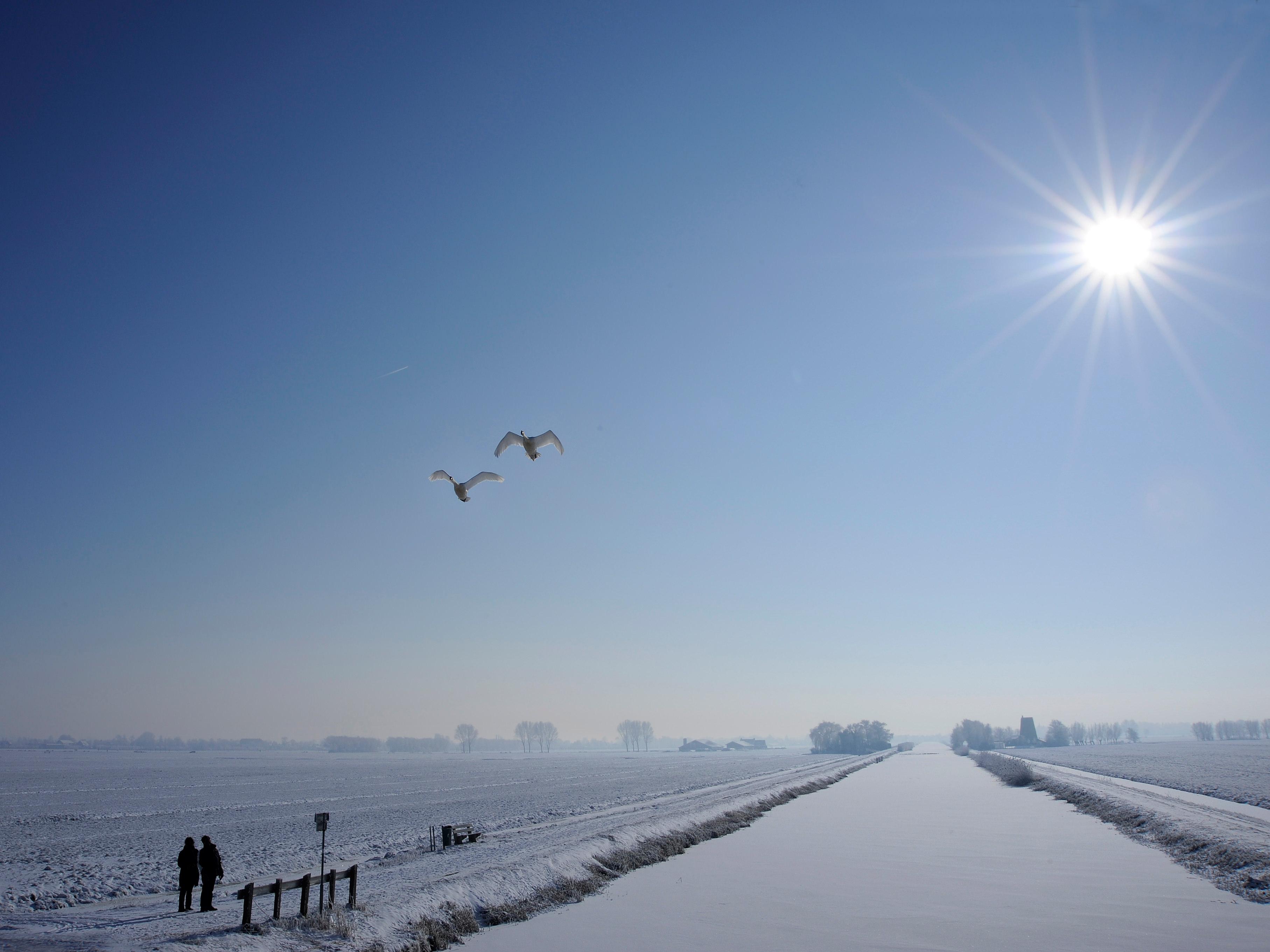 winter2253