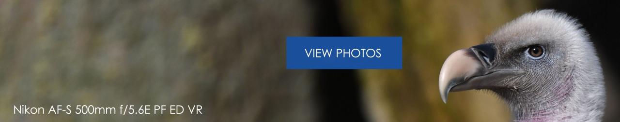 Viewfoto3840 Nikon500mmPF