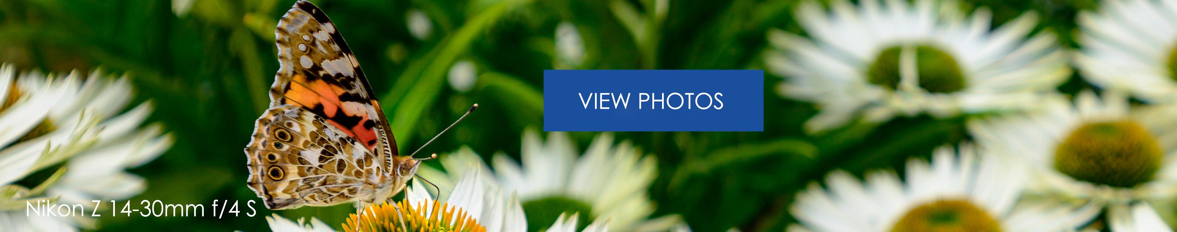 Nikon 1430mm Viewfoto3840