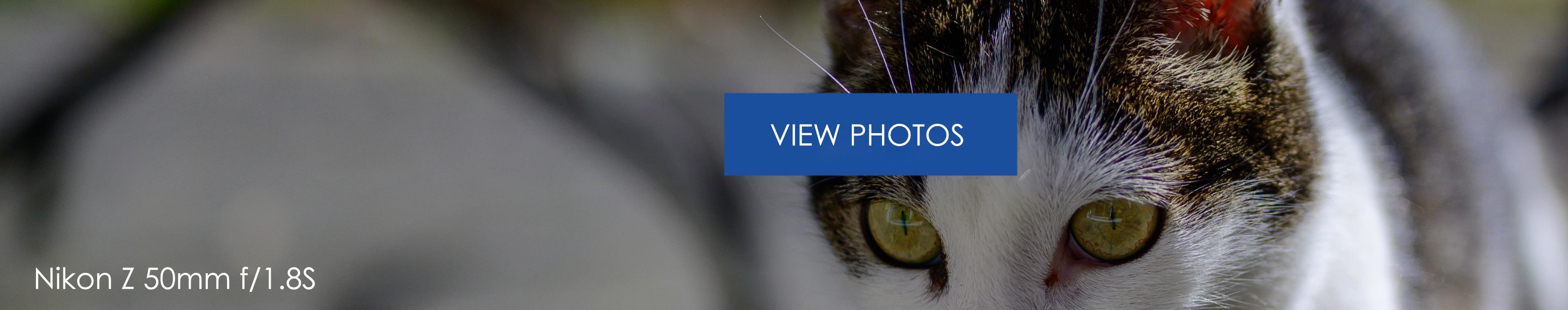Nikon Z 50mm 1p8 Viewfoto3840