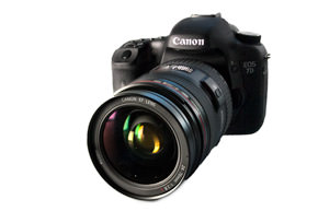 Canon EF 24-70 mm f/2.8L USM