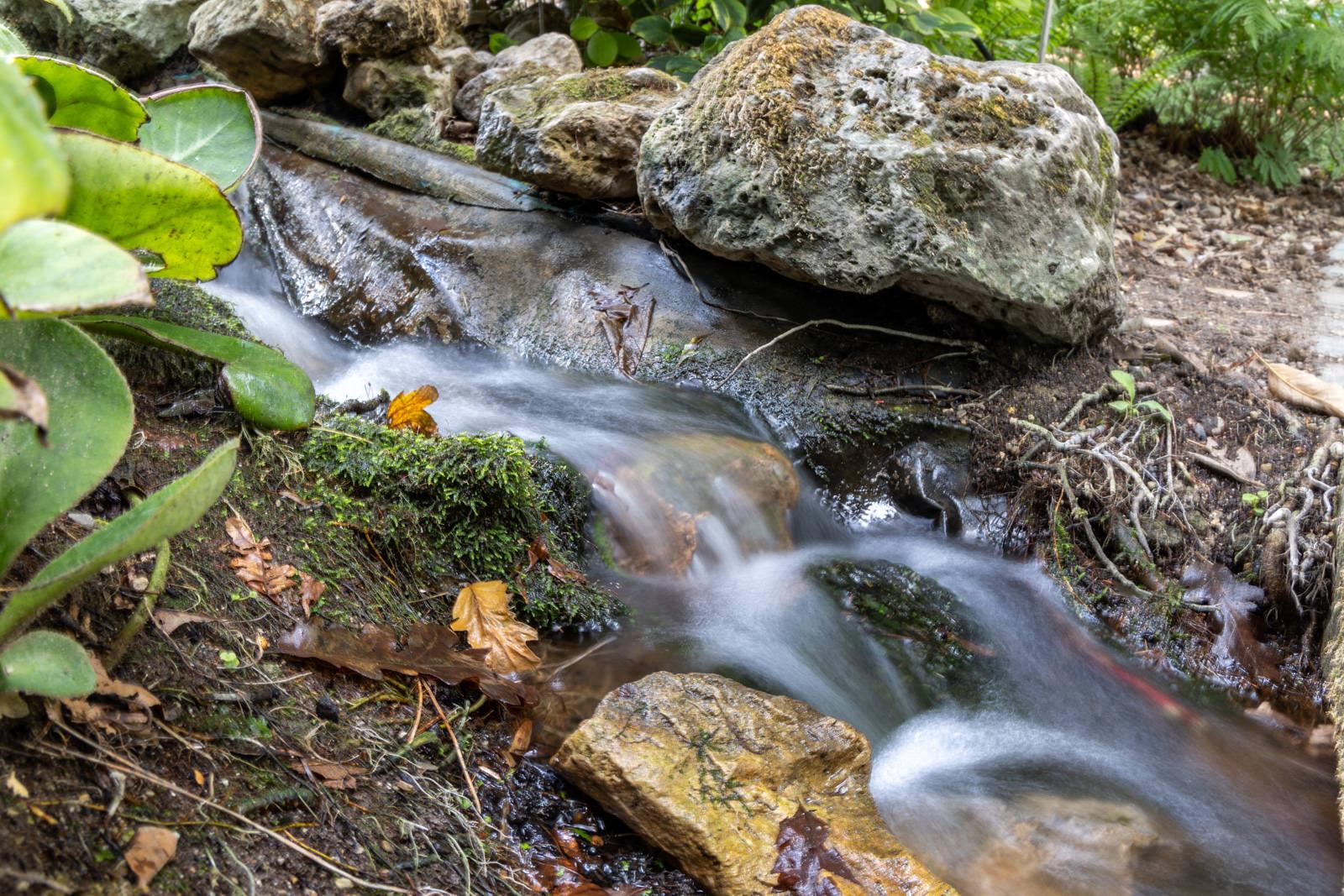 Canon Eos R6 stromend water